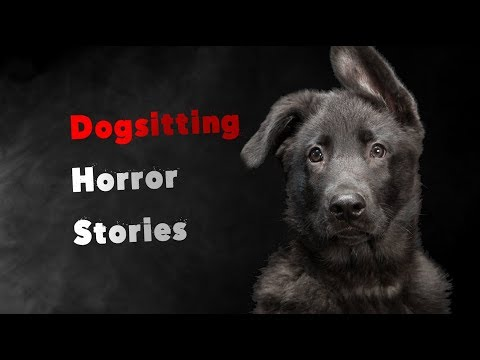 3 Scary True Dog Sitting Horror Stories (видео)