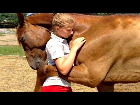10 Animals That Saved Peoples Lives