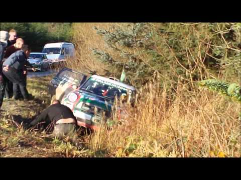 Mini WRC funny crash