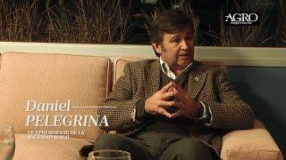 Daniel Pelegrina - Vicepresidente de la Sociedad Rural