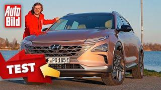 Hyundai Nexo (2020): Test - Wasserstoff - Info by Auto Bild