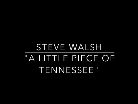 """Steve Walsh """"A Little Piece of Tennessee"""" w/ Andy Hess + Ethan Eubanks Brooklyn NY Dec 2018"""