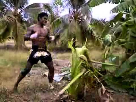 video que muestra a un hombre como tira un arbol dandole patadas con la espinilla