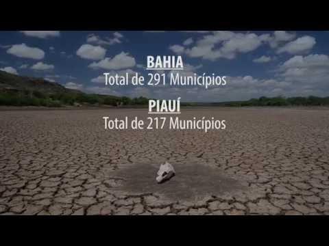 Desertificação ameaça mais de 1,4 mil Municípios brasileiros