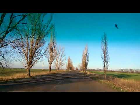 Дорога Гуляйполе-Покровка