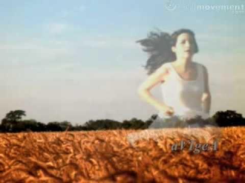 Tekst piosenki Morandi - Mikala po polsku