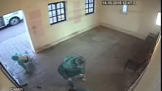 Боровский джентльмен