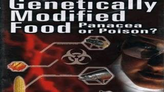 Bad Seed – Danger of Genetically Modified Food