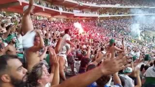 Palmeiras 1 X 0 Chapecoense Torcida Comemora o Título !!!