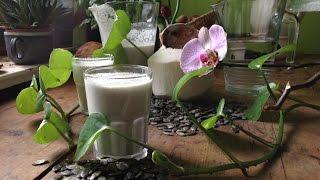 Pumpkin Seed Coconut Milk ~ Basic Recipe