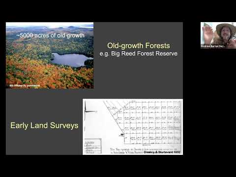 Maine Public's Age of Nature Lecture Series: Maine's Forests