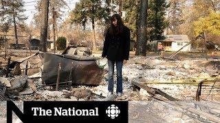 Video The ruins of Paradise: Inside the California fire zone | Dispatch MP3, 3GP, MP4, WEBM, AVI, FLV Desember 2018