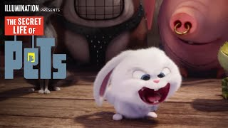 The Secret Life Of Pets - Happy Easter (HD) - Illumination full download video download mp3 download music download