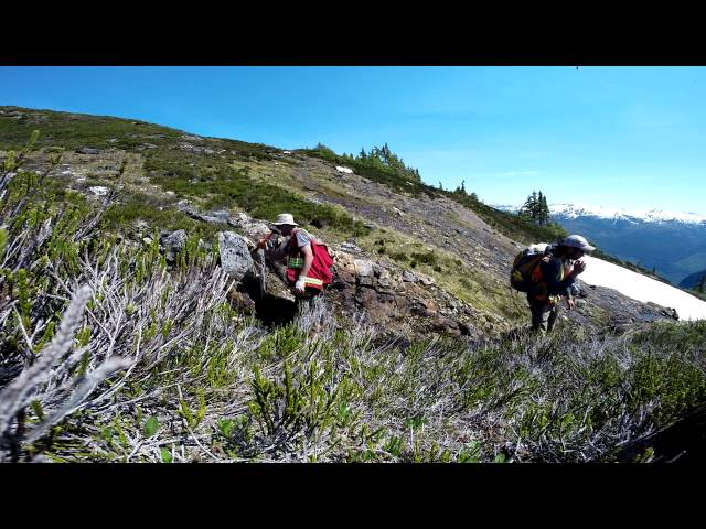 ALDEVER: Scotia Prospecting