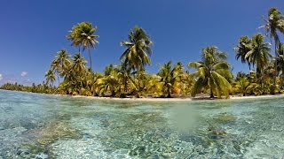 Tahaa French Polynesia  city pictures gallery : Best Snorkeling,Taha'a Island, Resort & Spa, French Polynesia