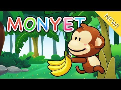 Lagu Anak Indonesia | Monyet