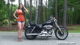 10. Used 2009 Harley Davidson XL1200L Sportster 1200 Superlow Motorcycles for sale - Ocala, FL
