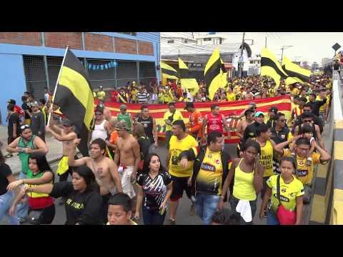 NOCHE AMARILLA 2014 SUR OSCURA ECUADOR - Sur Oscura - Barcelona Sporting Club