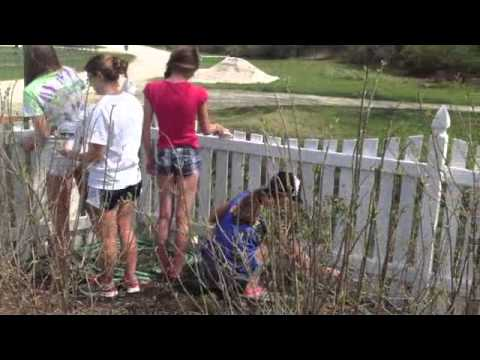 Wellness House - Paint The Fence