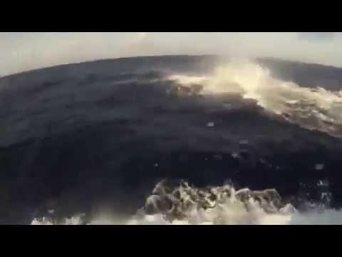 600 kiloluk kilic baligi tekneye boyle atladi