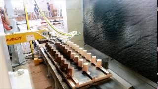 Ahşap Sanayi İçin Boyama Robotları, Hat Boyama Robotları