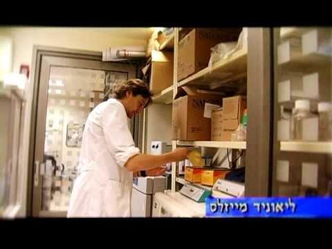 Technion der Medizinischen Fakultät