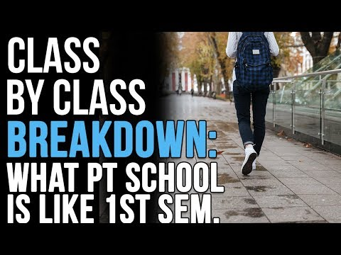 What Physical Therpy School is Like In Your First Semester: Class by Class Breakdown