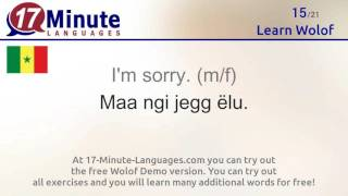https://www.17-minute-languages.com/en/wo/ In this video you will learn the most important words in Wolof. Watch this video on 5 different days and you will ...