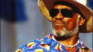 Taj Mahal & the Hula Blues Band - Hanapepe Dream