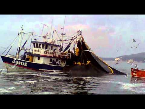 josue  pesca mortal chile san vicente