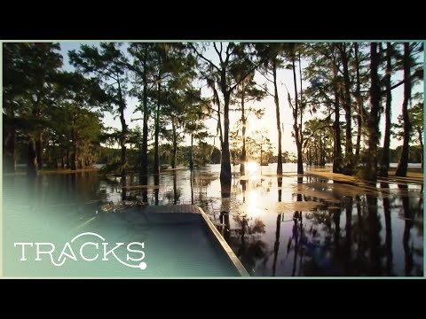 Along the Mississippi: The Deep South (Part 1 - Full Documentary) | TRACKS