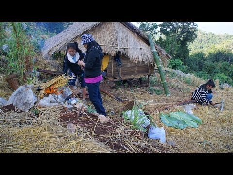 hmoob - This is a Hiking trip to the Hmong Rice Field way up in the mountain for sight seeing and flash back the old day. The trip took us almost 3 hours uphill.. Da...