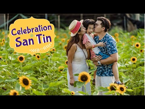 Discover Hong Kong Hidden Gems: Episode 6 - San Tin Farm Sunflower Fields (元朗信芯園向日葵花海)