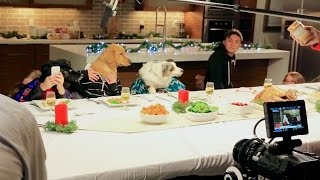 Freshpet Holiday Feast - Behind the Scenes