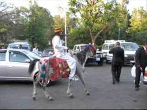 hot oromo music