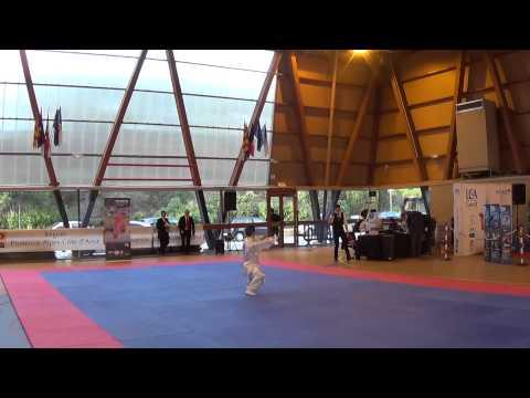 coupe ligue Cote azur 2015 - Tai Chi Chuan  mains nues Damien T (видео)