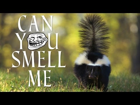 GROSS! CAN YOU SMELL ME!