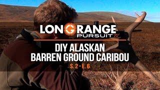 Video Long Range Pursuit | S2 E6 DIY Alaskan Caribou MP3, 3GP, MP4, WEBM, AVI, FLV Mei 2017