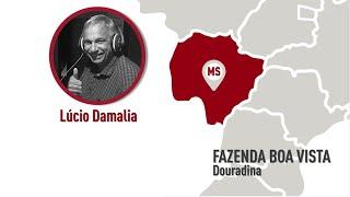 MS - Douradina - Lúcio Damalia