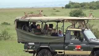 Maasai Mara Kenya  city pictures gallery : Cheetah jumps into a Safari Jeep - Masai Mara - Kenya