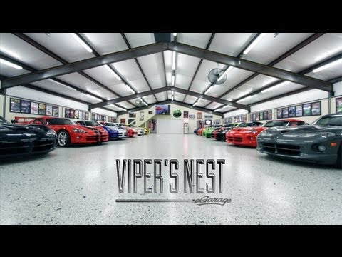 0 Snakes Alive! Inside D'Ann and Wayne Rauh's Massive Viper Collection [Video]
