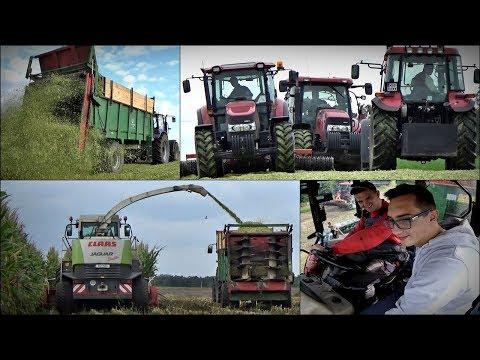 Kiszonka 2017 ☆ 3x Case, 2x Fendt, Farmtrac & Claas Jaguar 850 ㋡ Vlog GoPro #61