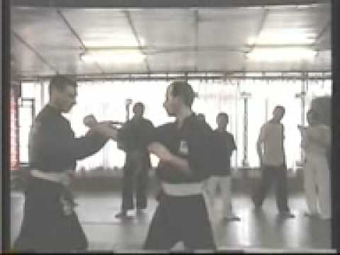 Persaudaraan Setia Hati Seminar in Italy 2008 Part 2