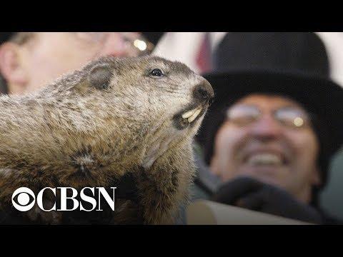 Groundhog Day 2019: Punxsutawney Phil's winter prediction, live stream