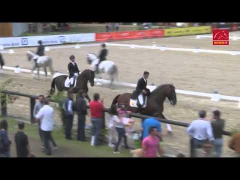 Reportagem no programa 'Equitação Magazine' da 'EquitaçãoTV', sobre a VIII Feira do Cavalo de Pon...