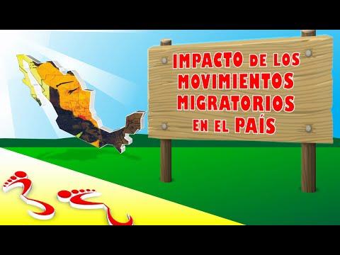 Impacto de los Movimientos Migratorios en el País
