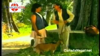 Video Nepali Comedy Teli-Serial with Narayan Tripathi MP3, 3GP, MP4, WEBM, AVI, FLV Juli 2018