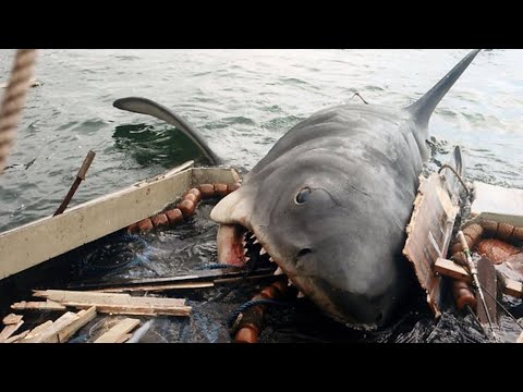 Top 10 Favorite Death From The Jaws Series