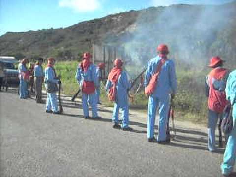 1-Festa dos Bacamarteiros em Solidão-Pe, 15 de agosto de 2011.