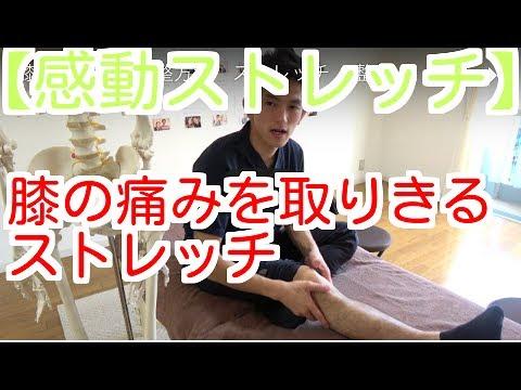 【その痛みこれが原因かも?】膝の痛みを減らすお皿エクササイズ